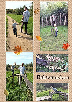 Belevenisbos