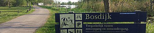 Bosdijk