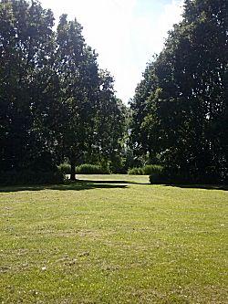Het grote grasveld