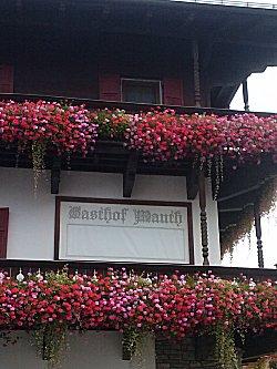 Bloemen aan het balkon
