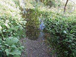 het water staat over het pad heen