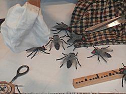De vliegen bij het Dappere kleermakertje