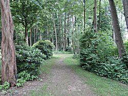 Natuur Sittensen camperplaats
