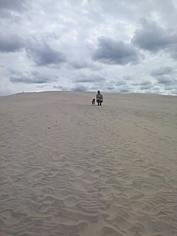 Een grote zandbende