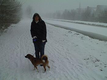 Wandelen met de hond in de sneeuw