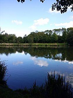 Westerpark foto 2